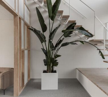 Architecten Groep III Van Reybrouck 24 1200X590